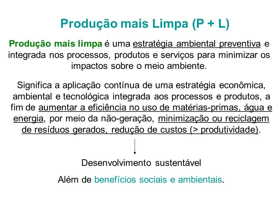 Produção mais Limpa (P + L)
