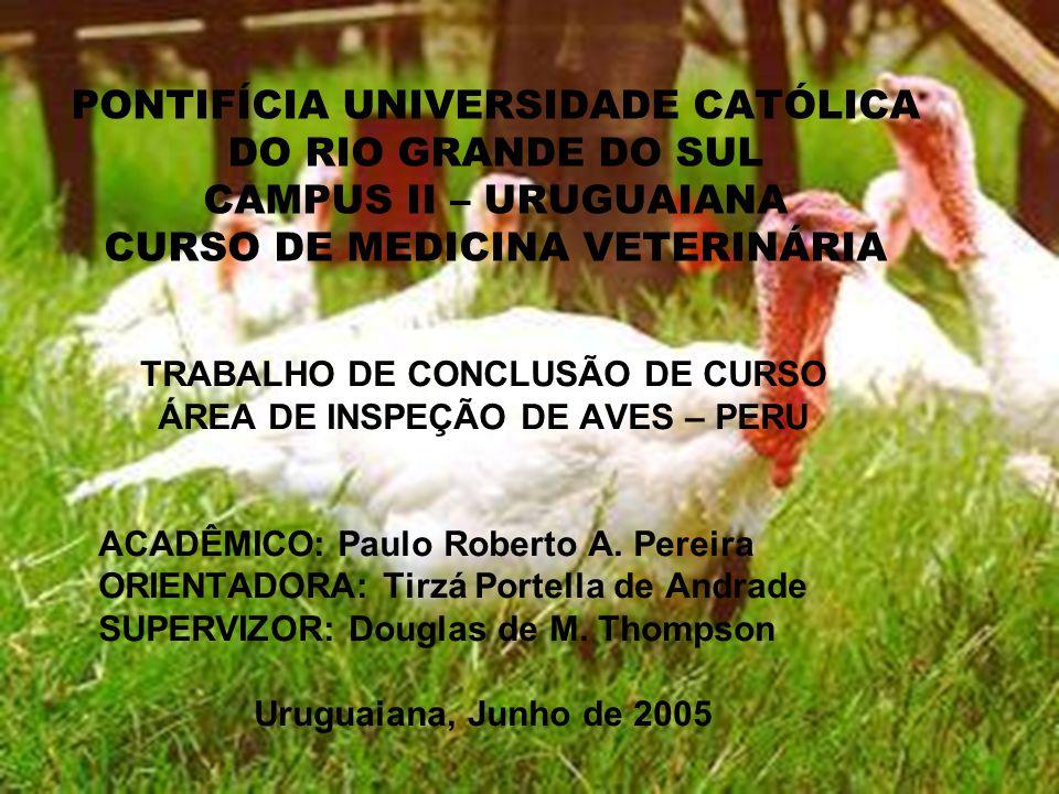 TRABALHO DE CONCLUSÃO DE CURSO ÁREA DE INSPEÇÃO DE AVES – PERU