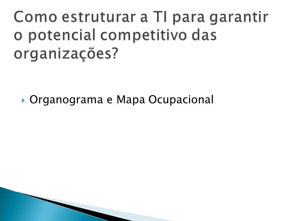 Como estruturar a TI para garantir o potencial competitivo das organizações