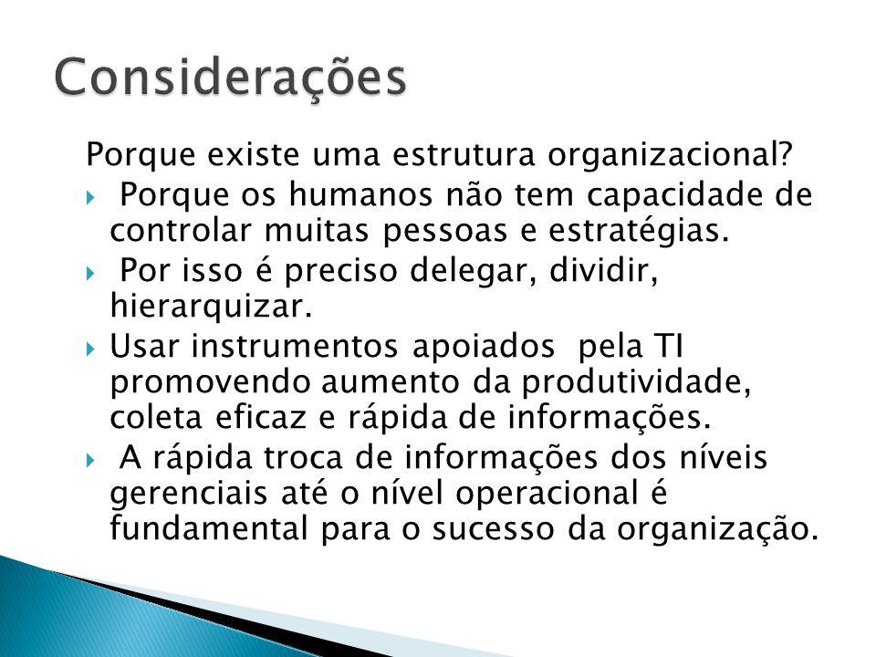 Considerações Porque existe uma estrutura organizacional