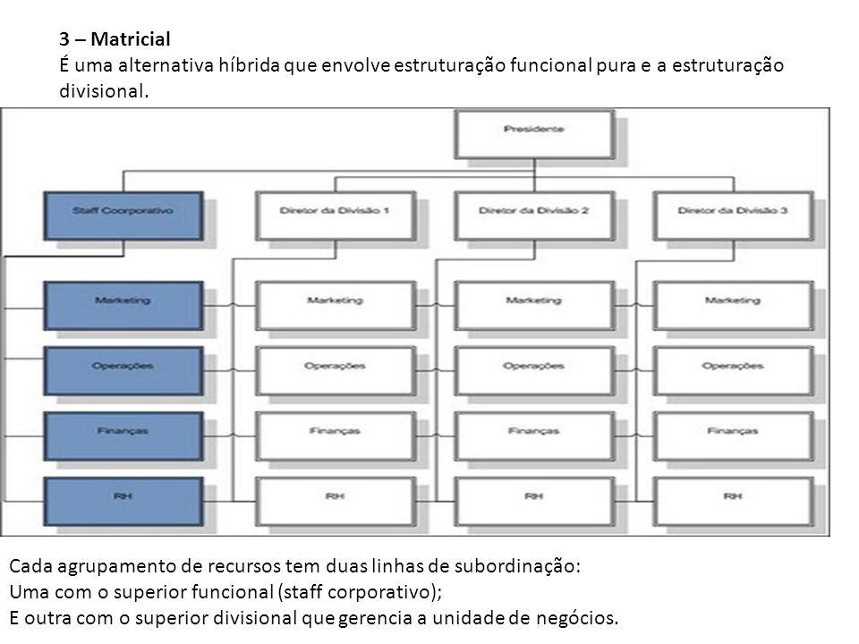 3 – Matricial É uma alternativa híbrida que envolve estruturação funcional pura e a estruturação divisional.