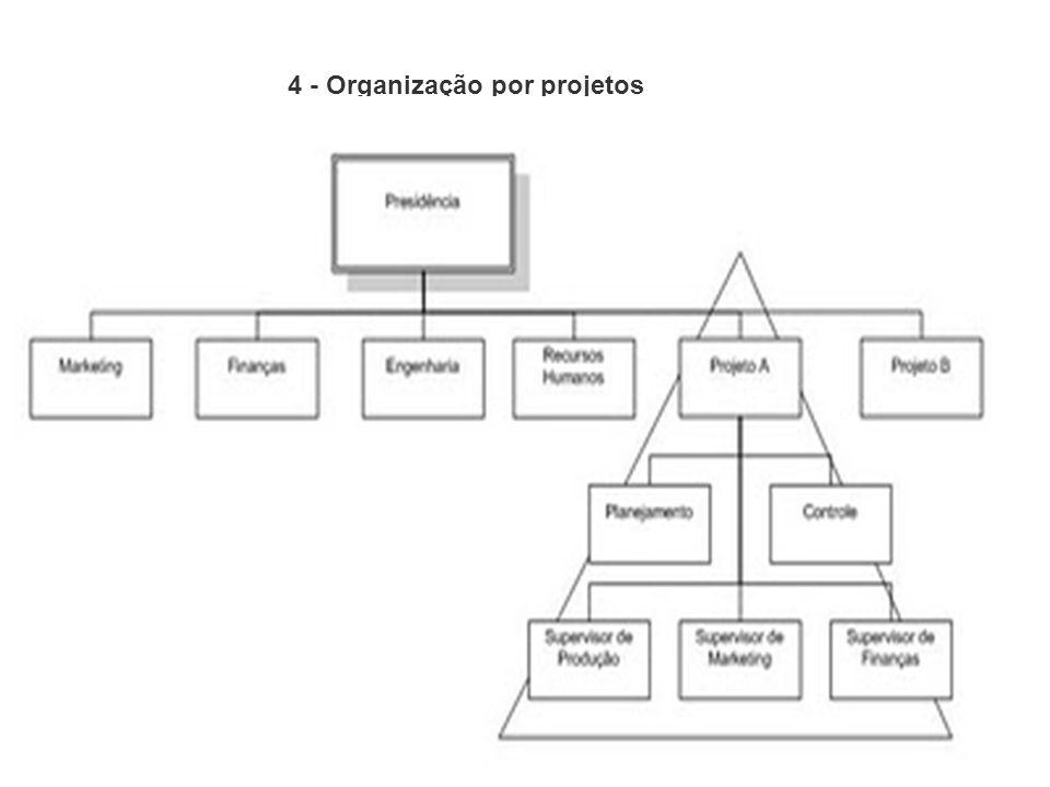 4 - Organização por projetos