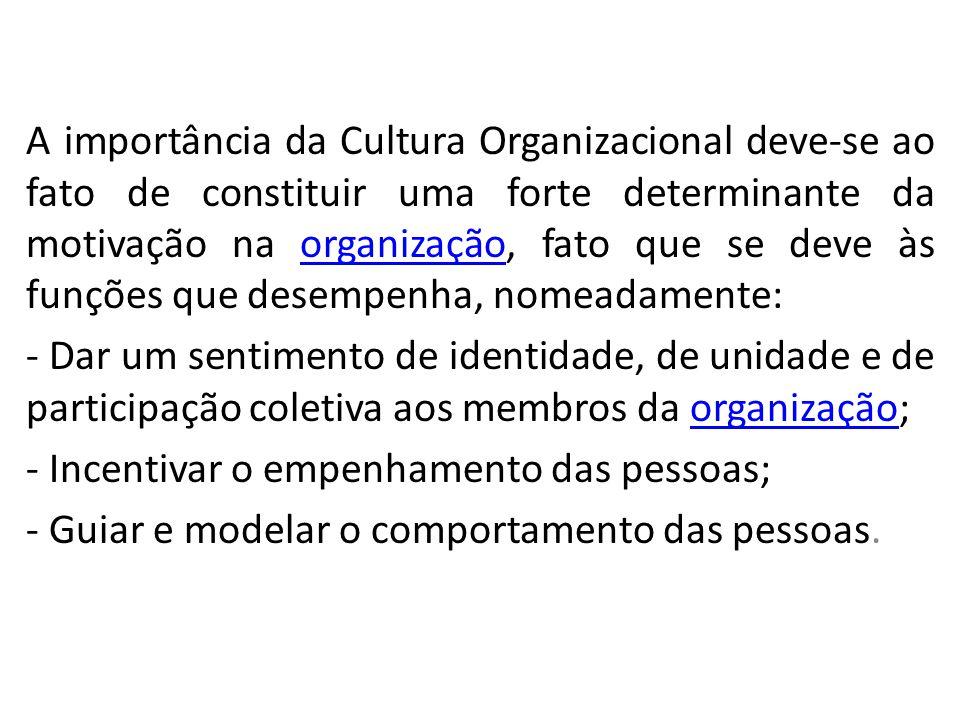 A importância da Cultura Organizacional deve-se ao fato de constituir uma forte determinante da motivação na organização, fato que se deve às funções que desempenha, nomeadamente:
