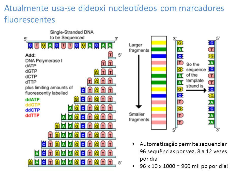 Atualmente usa-se dideoxi nucleotídeos com marcadores fluorescentes