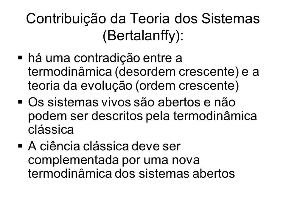 Contribuição da Teoria dos Sistemas (Bertalanffy):