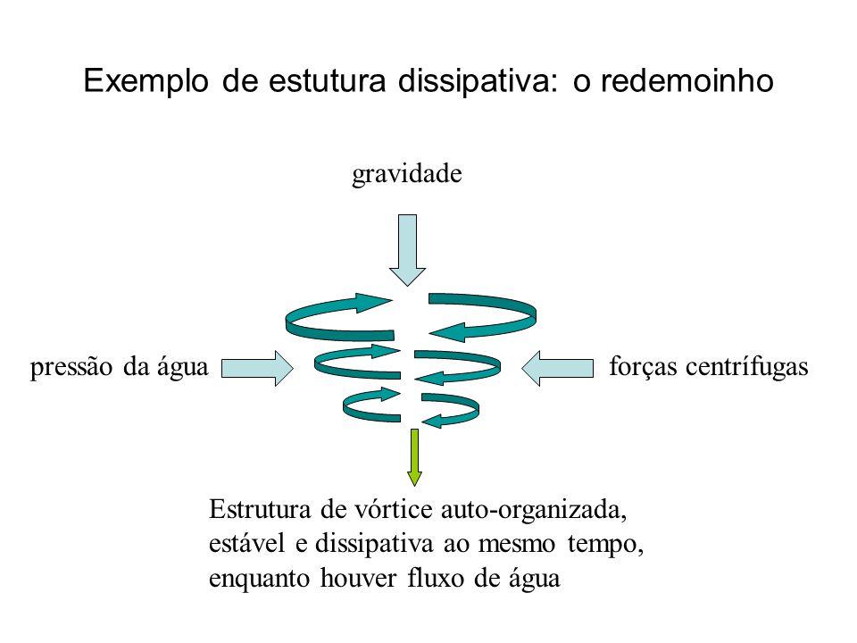 Exemplo de estutura dissipativa: o redemoinho