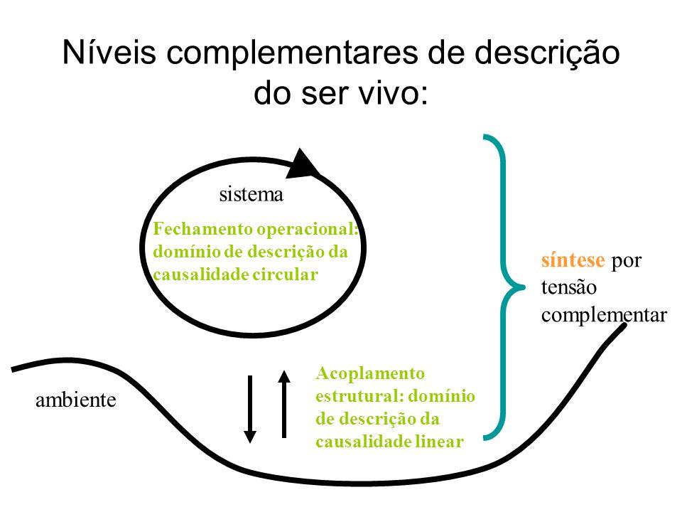 Níveis complementares de descrição do ser vivo: