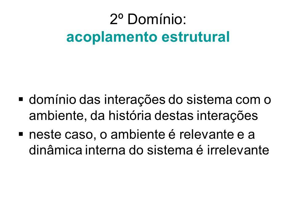 2º Domínio: acoplamento estrutural