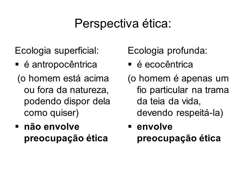 Perspectiva ética: Ecologia superficial: é antropocêntrica