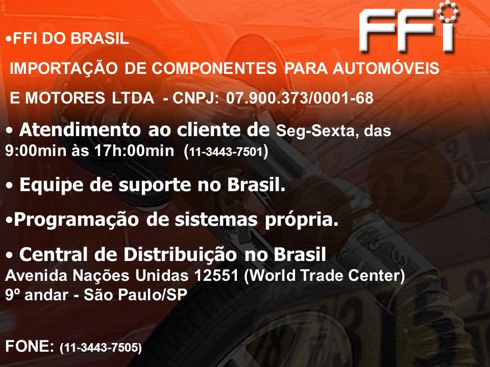 Equipe de suporte no Brasil. Programação de sistemas própria.