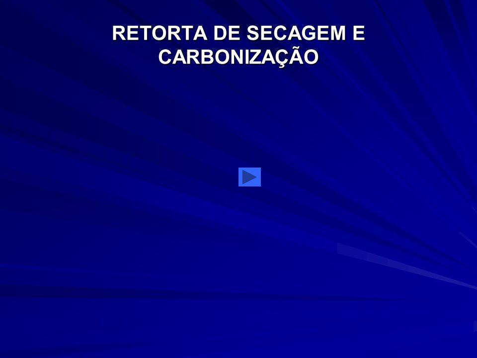 RETORTA DE SECAGEM E CARBONIZAÇÃO