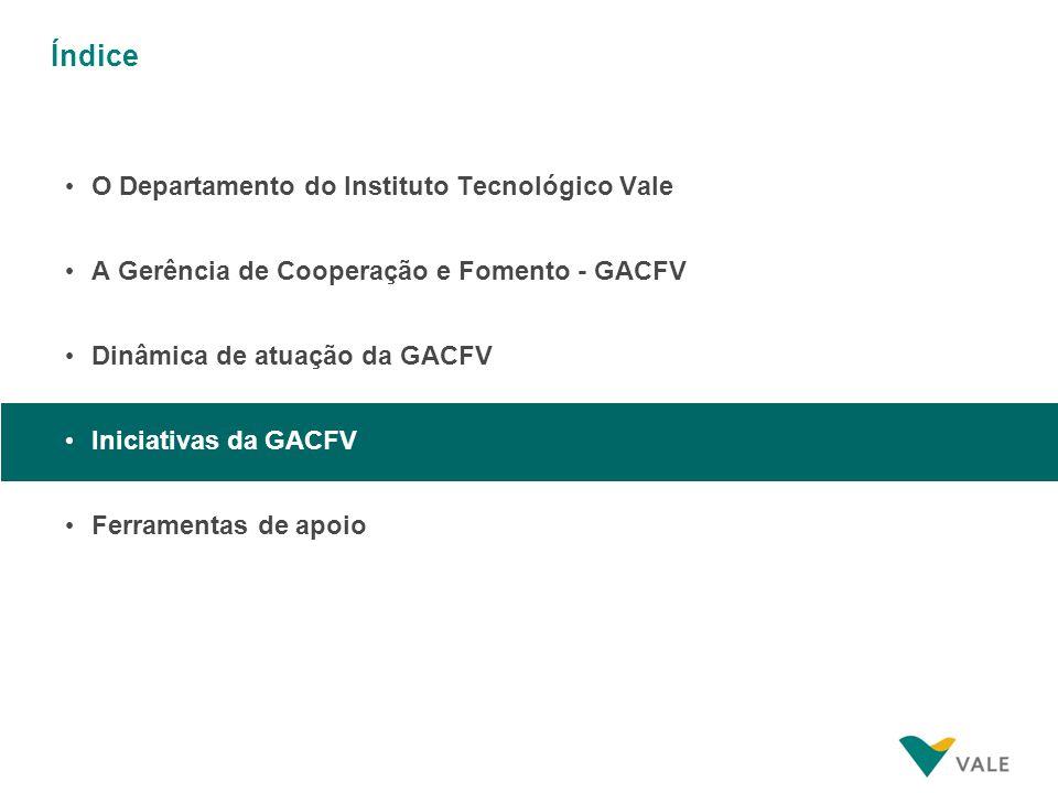 Convênio Vale – FAPESPA (2008)