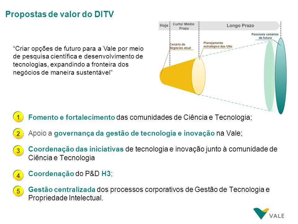 Estrutura organizacional do DITV em 2010