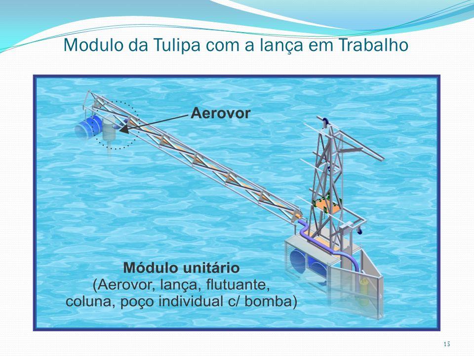Modulo da Tulipa com a lança em Trabalho