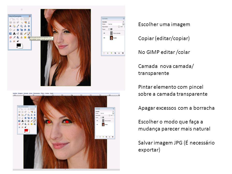 Escolher uma imagem Copiar (editar/copiar) No GIMP editar /colar. Camada nova camada/ transparente.