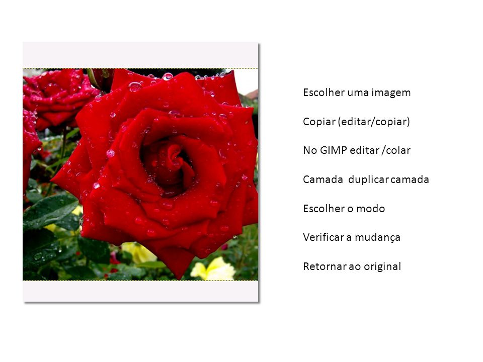 Escolher uma imagem Copiar (editar/copiar) No GIMP editar /colar. Camada duplicar camada. Escolher o modo.