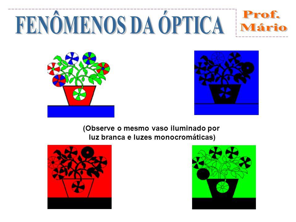 (Observe o mesmo vaso iluminado por luz branca e luzes monocromáticas)