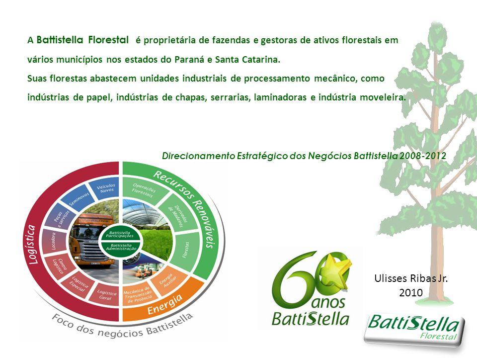 A Battistella Florestal é proprietária de fazendas e gestoras de ativos florestais em vários municípios nos estados do Paraná e Santa Catarina.