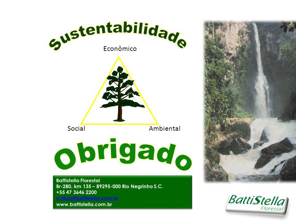 Sustentabilidade Obrigado Social Ambiental Econômico