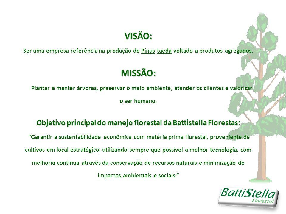 Objetivo principal do manejo florestal da Battistella Florestas: