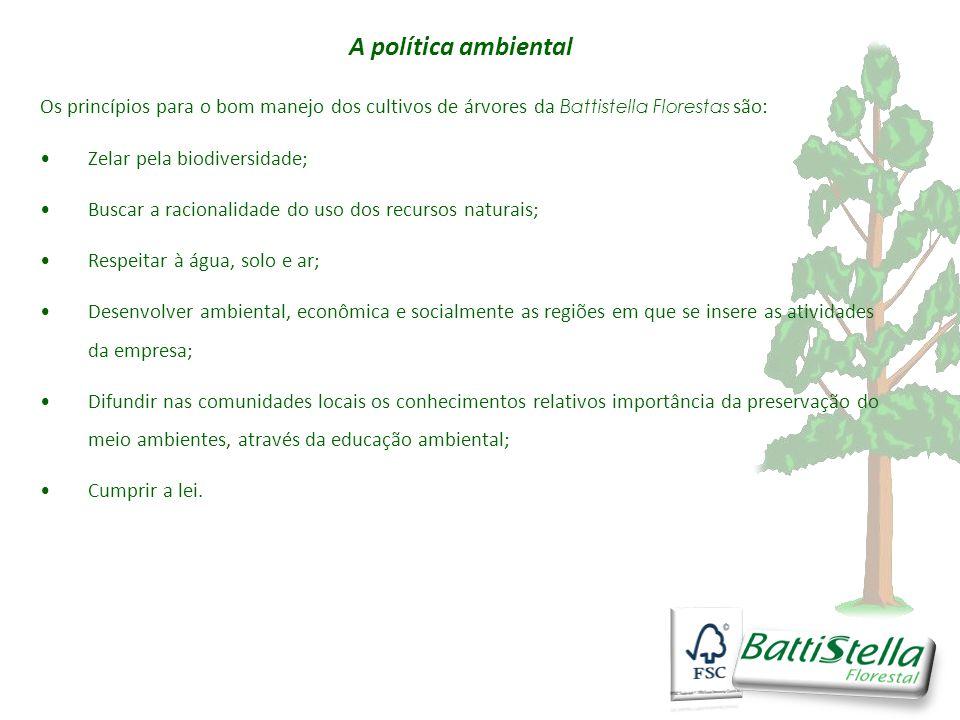 A política ambiental Os princípios para o bom manejo dos cultivos de árvores da Battistella Florestas são:
