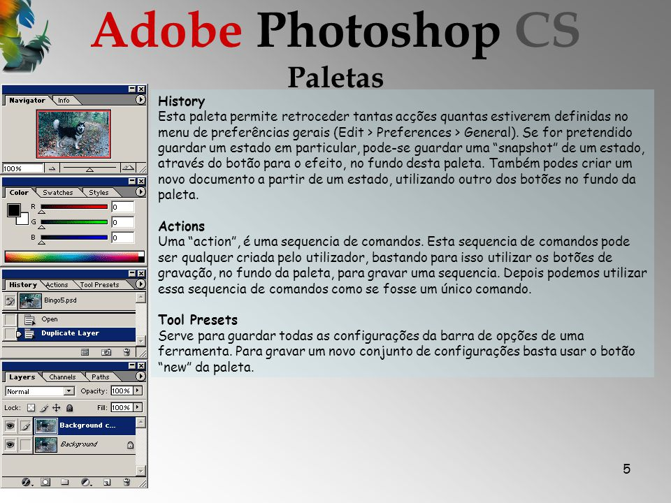 Adobe Photoshop CS Paletas