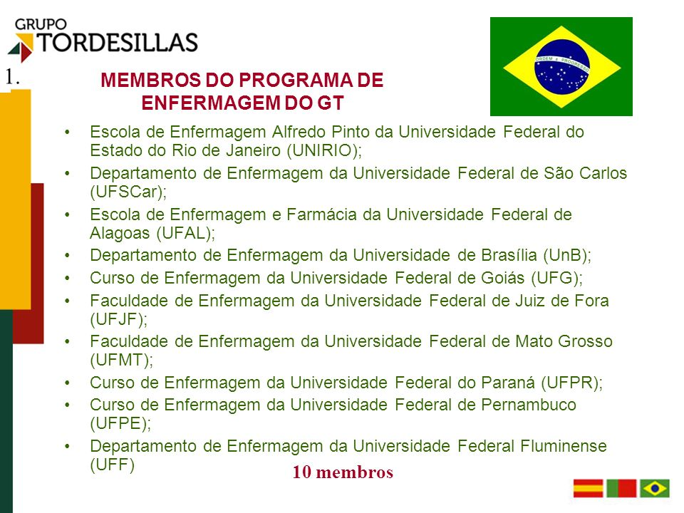 MEMBROS DO PROGRAMA DE ENFERMAGEM DO GT