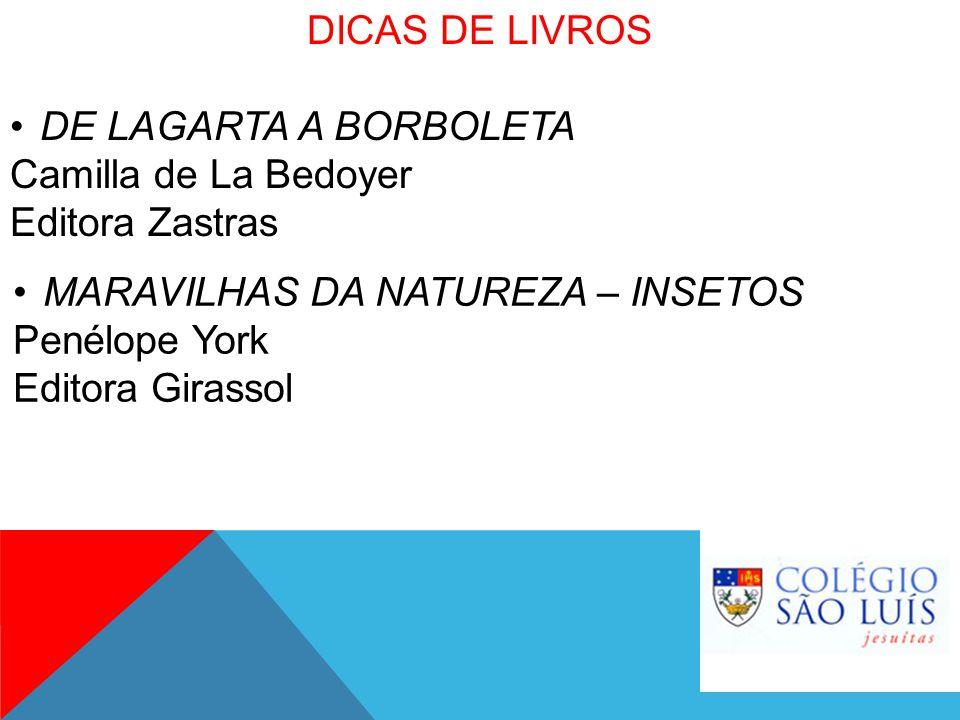 DICAS DE LIVROS DE LAGARTA A BORBOLETA. Camilla de La Bedoyer. Editora Zastras. MARAVILHAS DA NATUREZA – INSETOS.