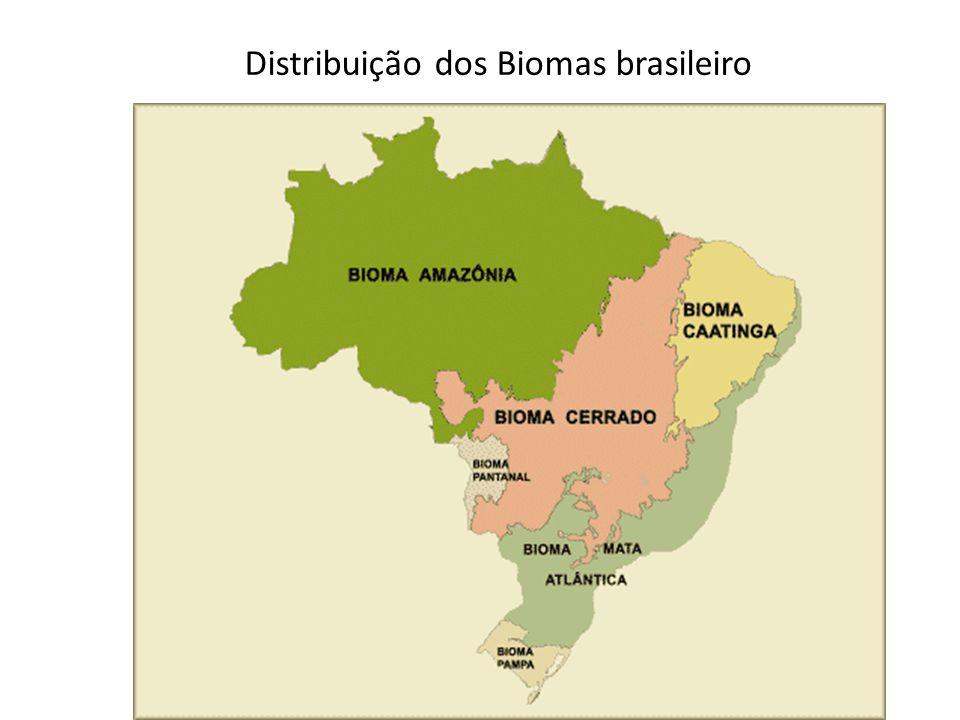 Distribuição dos Biomas brasileiro