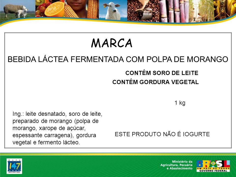BEBIDA LÁCTEA FERMENTADA COM POLPA DE MORANGO