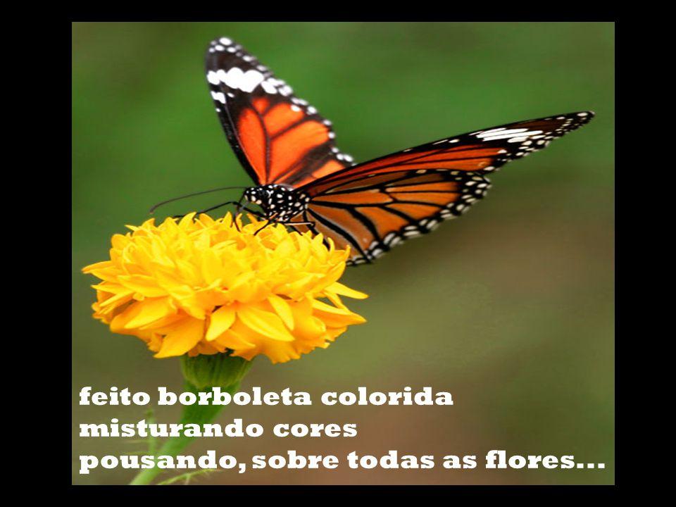 feito borboleta colorida