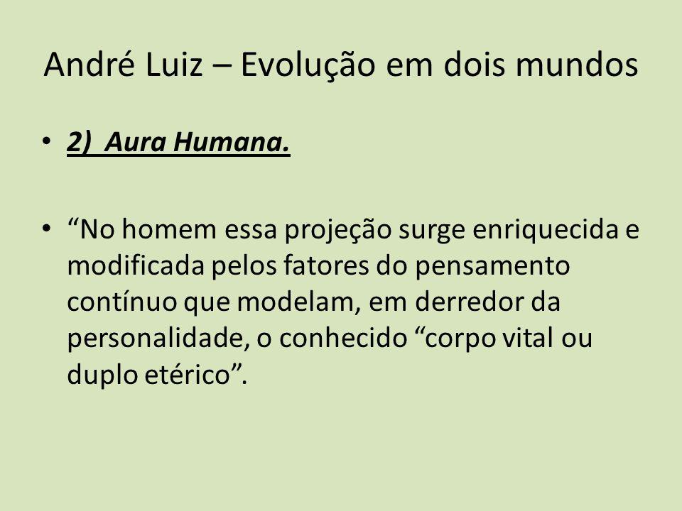 André Luiz – Evolução em dois mundos