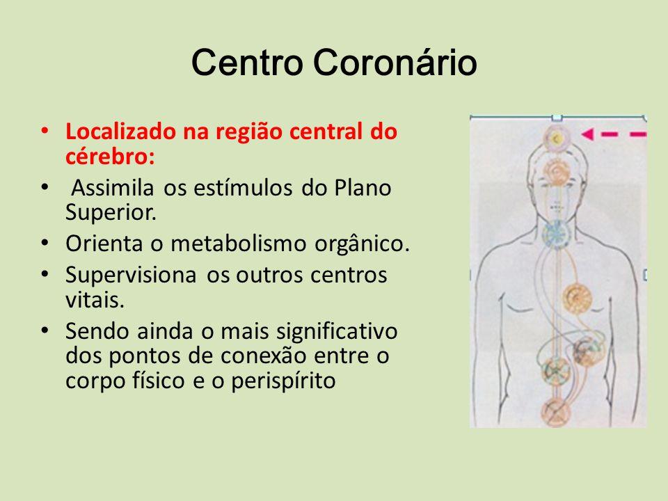 Centro Coronário Localizado na região central do cérebro: