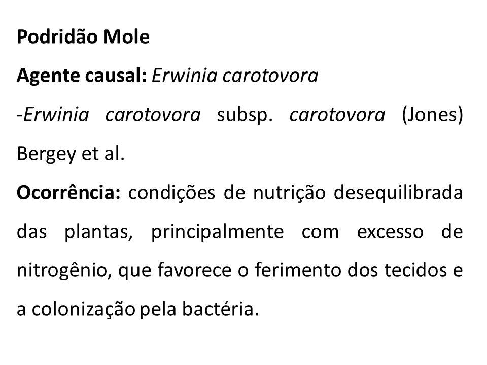 Podridão Mole Agente causal: Erwinia carotovora. Erwinia carotovora subsp. carotovora (Jones) Bergey et al.
