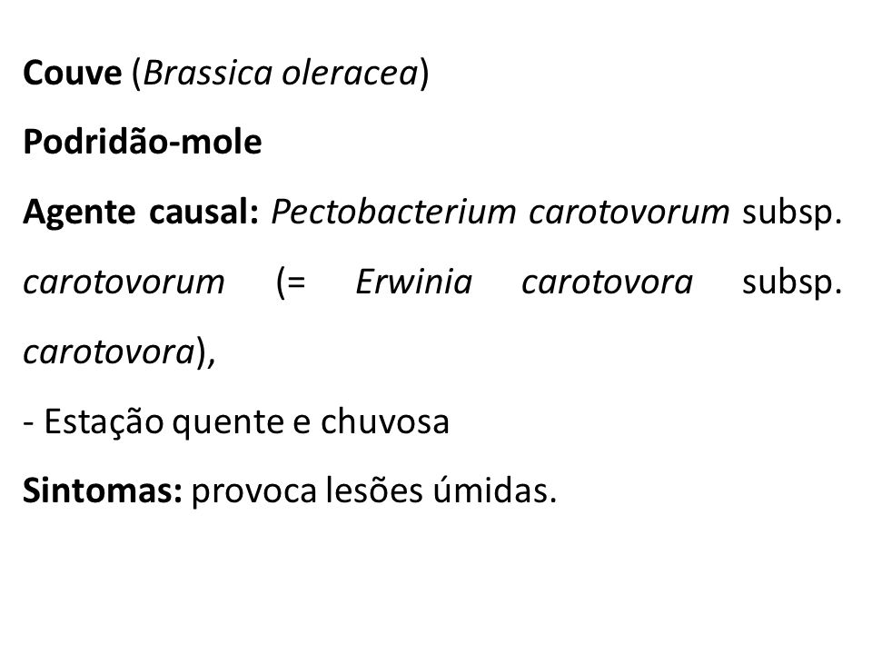 Couve (Brassica oleracea)