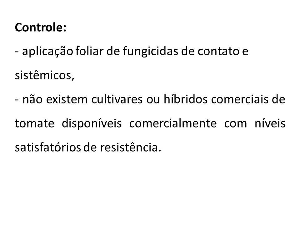 Controle: - aplicação foliar de fungicidas de contato e. sistêmicos,