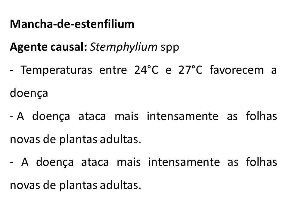 Mancha-de-estenfilium