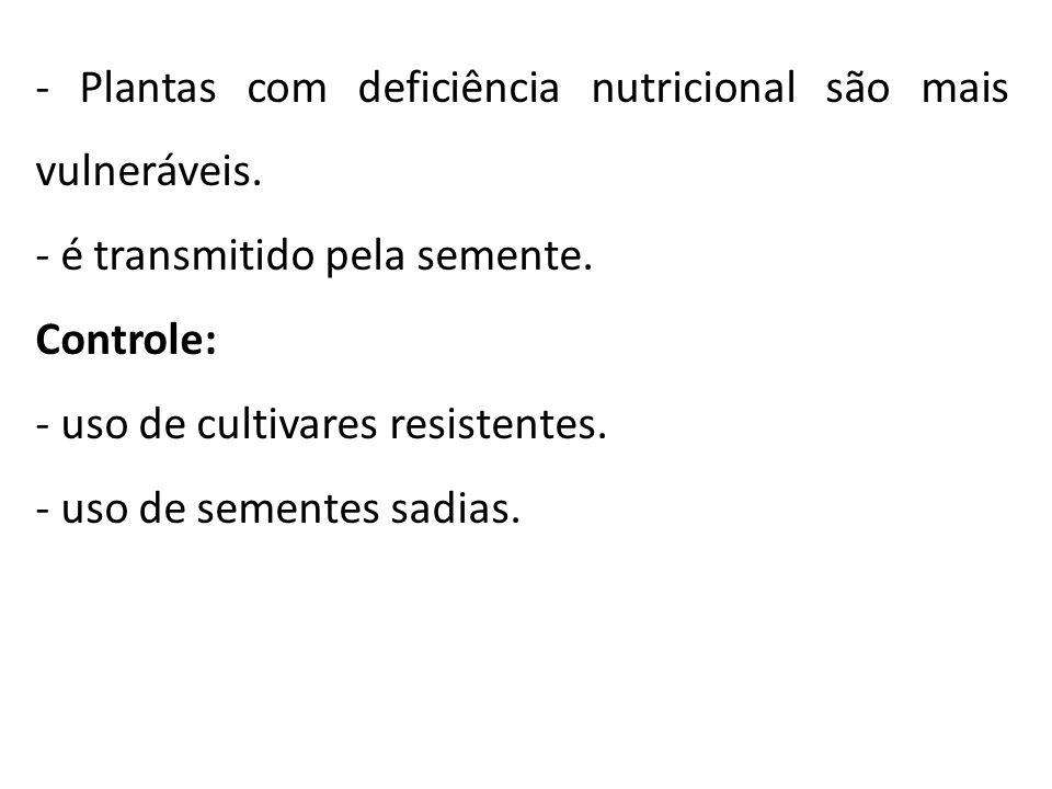 - Plantas com deficiência nutricional são mais vulneráveis.