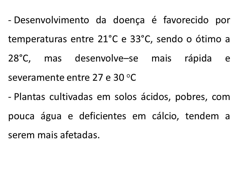 Desenvolvimento da doença é favorecido por temperaturas entre 21°C e 33°C, sendo o ótimo a 28°C, mas desenvolve–se mais rápida e severamente entre 27 e 30 oC