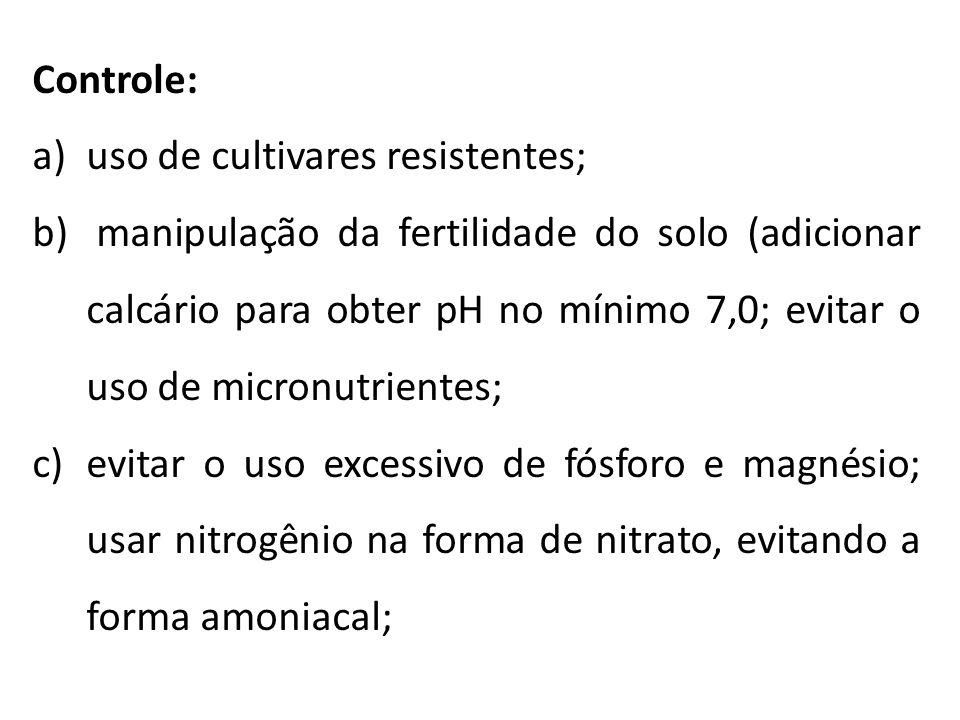 Controle: uso de cultivares resistentes;