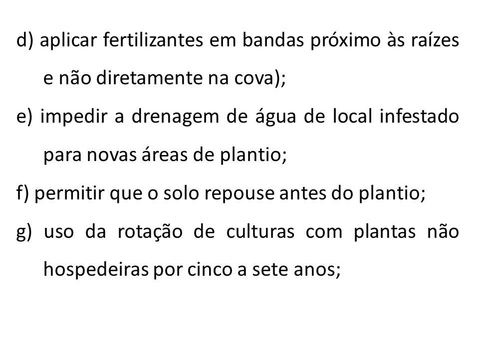 d) aplicar fertilizantes em bandas próximo às raízes e não diretamente na cova);