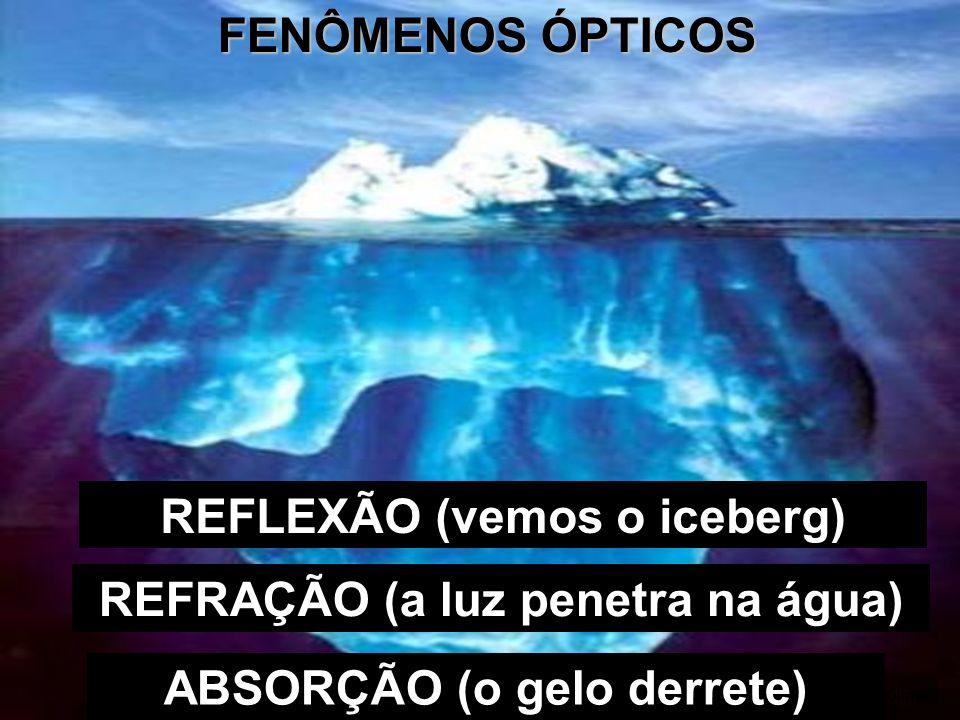 REFLEXÃO (vemos o iceberg)