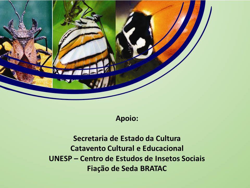 Secretaria de Estado da Cultura Catavento Cultural e Educacional