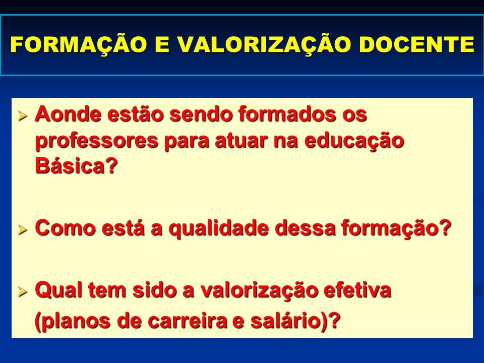 FORMAÇÃO E VALORIZAÇÃO DOCENTE