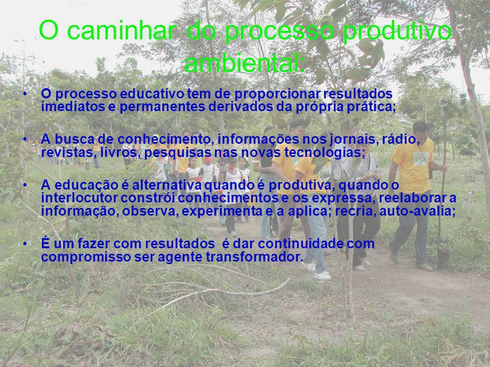 O caminhar do processo produtivo ambiental:
