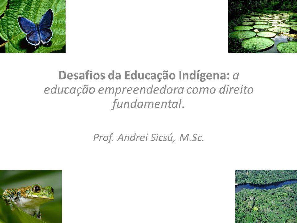 Desafios da Educação Indígena: a educação empreendedora como direito fundamental.