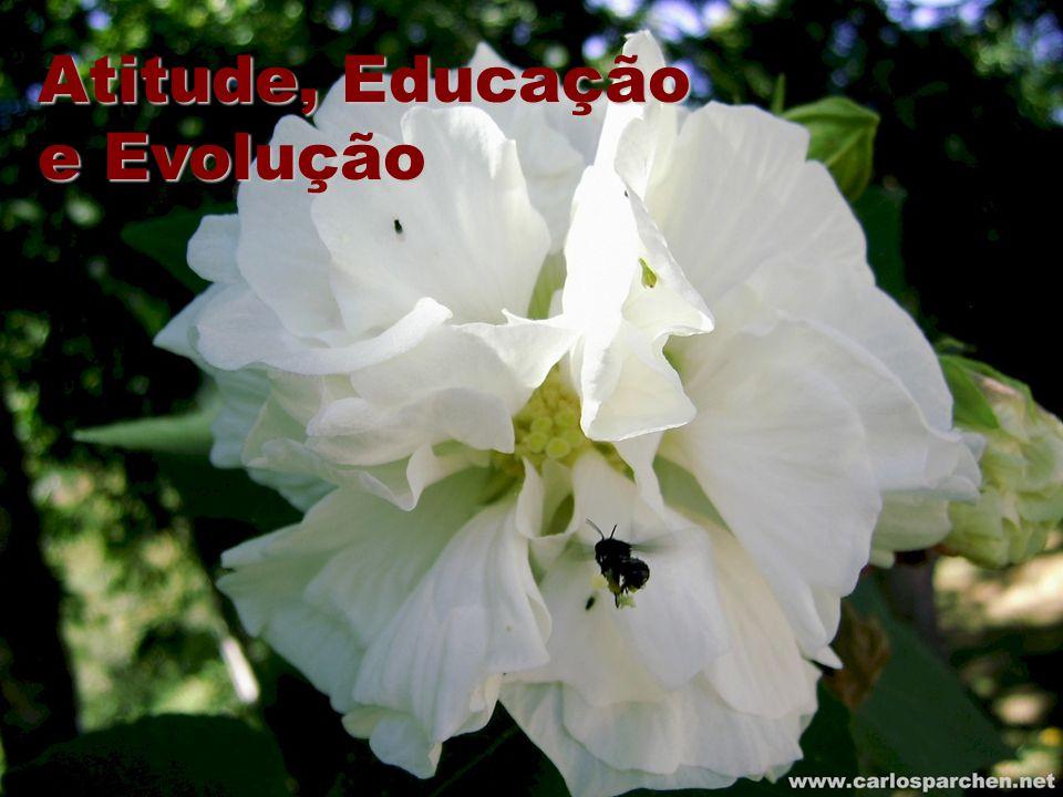 Atitude, Educação e Evolução