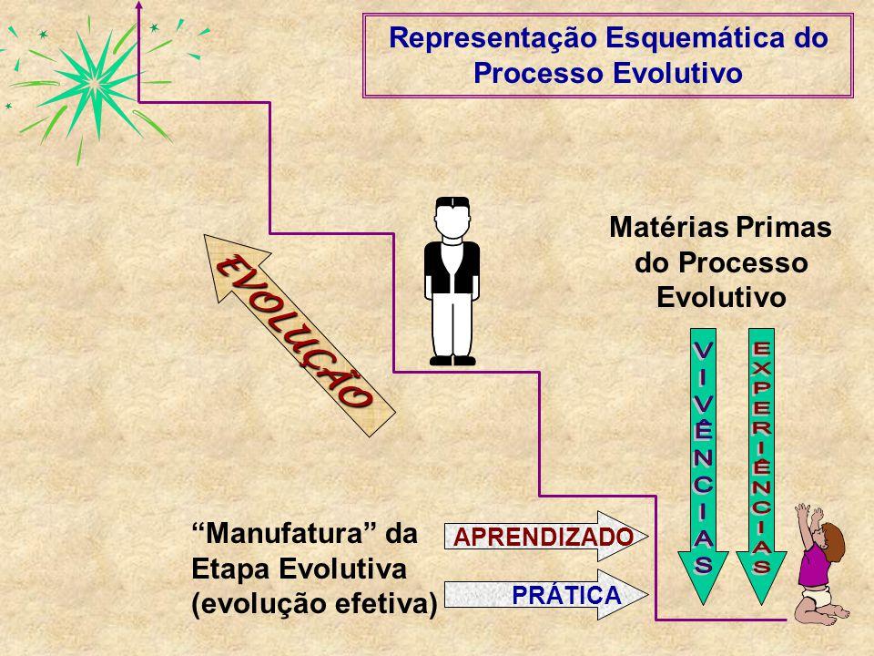 EVOLUÇÃO Representação Esquemática do Processo Evolutivo