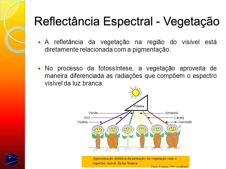 Reflectância Espectral - Vegetação
