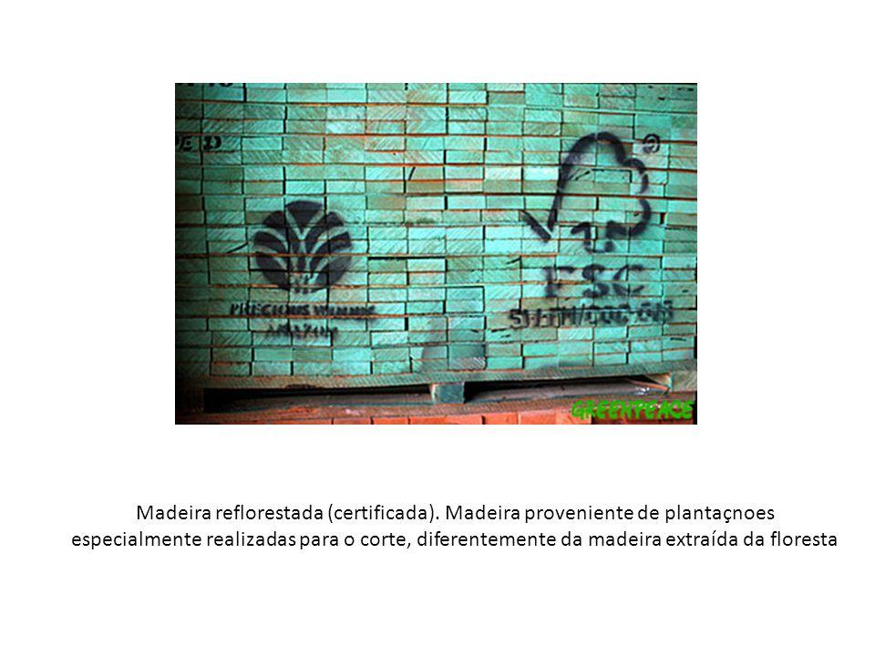 Madeira reflorestada (certificada). Madeira proveniente de plantaçnoes